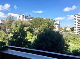Calatafimi alta (Palermo) Affitto Appartamento